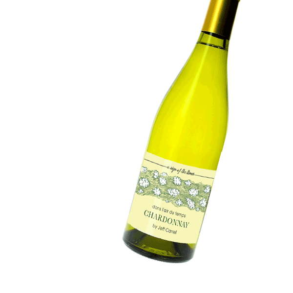 Dans l'air du temps Chardonnay - Jeff Carrel Vin de France