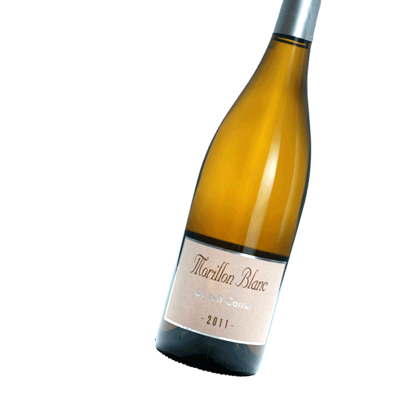 Morillon Blanc - Jeff Carrel  Vin de France 2019